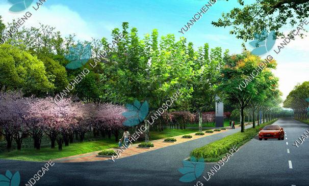 绿化平面效果图 高清图片